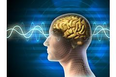 Улучшив сон, можно снизить влияние времени на способность запоминать и обучаться.