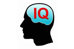 Коэффициент интеллекта человека (IQ) определяет, сколько у него друзей.