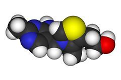 Витамин В1 (тиамин). Запасы витамина B1 необходимо пополнять регулярно. Фото: Wiki